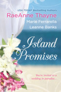 Island Promises by RaeAnne Thayne