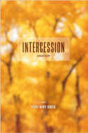 Intercession: Jessica's Story by Vicki Hunt Budge
