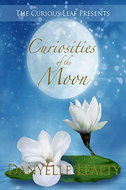 Curiosities of the Moon by Danyelle Leafty