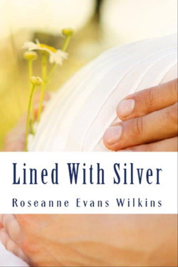 LinedWithSilver
