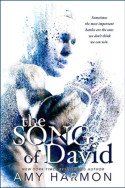 The Song of David by Amy Harmon