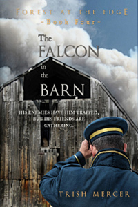 FalconBarn_200sp