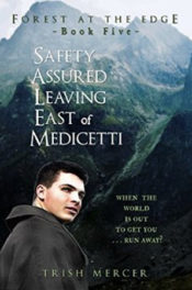 Safety Assured Leaving East of Medicetti by Trish Mercer