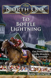 To Bottle Lightning by Ann Hunter