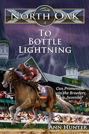 North Oak: To Bottle Lightning by Ann Hunter