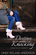 Destiny Came Knocking by Cindy Roland Anderson