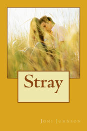 Stray by Joni Johnson