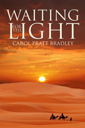 Waiting for the Light by Carol Pratt Bradley
