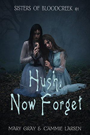 Hush, Now Forget by Mary Gray and Cammie Larson