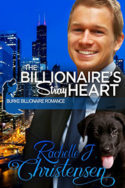 The Billionaire's Stray Heart by Rachelle J. Christensen