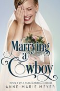 Marrying a Cowboy by Anne-Marie Meyer