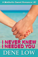 I Never Knew I Needed You by Dene Low