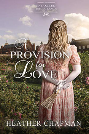 A Provision for Love by Heather Chapman