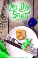 Inn Dire Straits by Dixie Davis