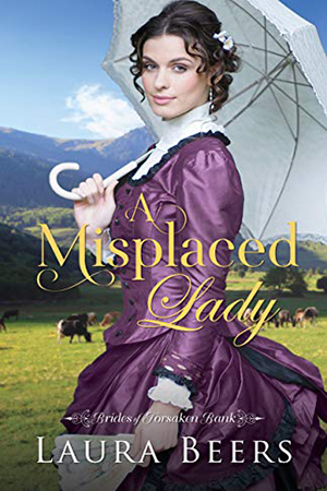 A Misplaced Lady by Laura Beers