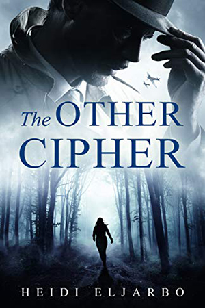 Soli Hansen: The Other Cipher by Heidi Eljarbo